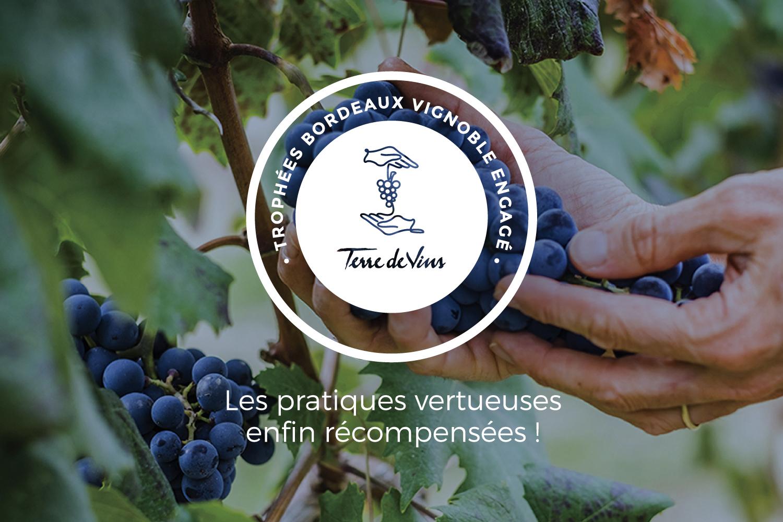 Concours Bordeaux Vignoble engagé